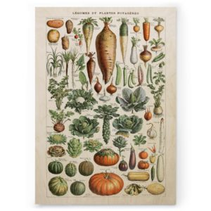 Plywood print vanerijuliste legumes