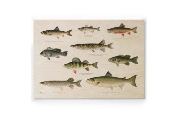 Plywood Print vanerijuliste Gone Fishing