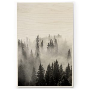 Plywood Print Vanerijuliste Misty Forest 30x40cm