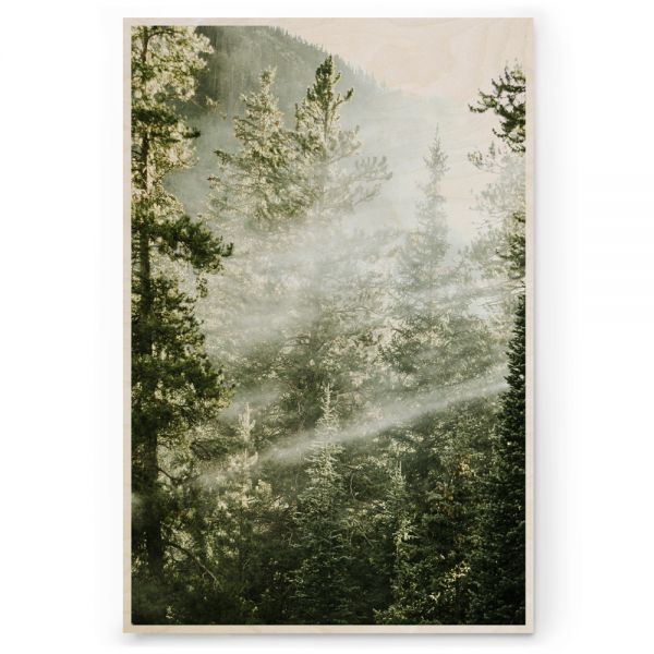 Plywood Print Vanerijuliste Light between the trees
