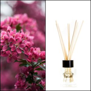 Huonetuoksu Japanilainen Kirsikankukka